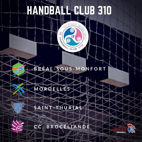 Site officiel du Handball Club 310