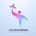CESSON RENNES METROPOLE HB 1