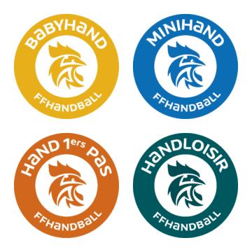 Au Handball Club 310, des pratiques pour tous